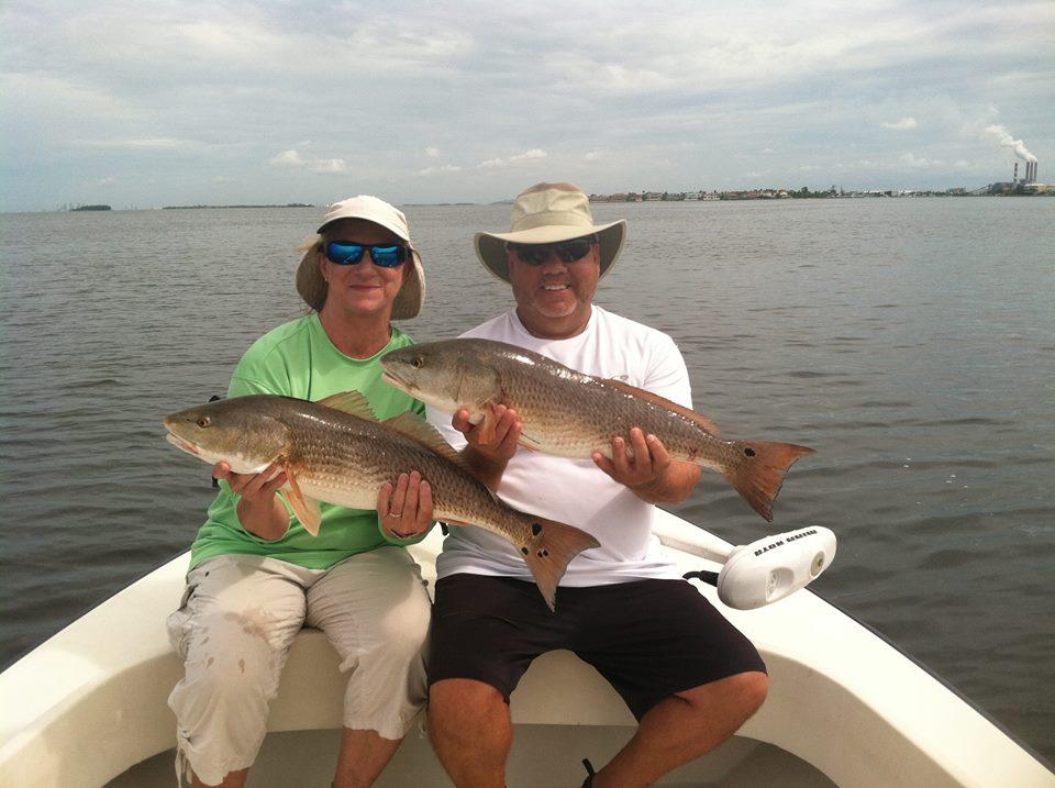 Tampa bay fishing fish fanatic charters for Tampa bay fish